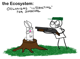 the ecosystem by CrazyRonn