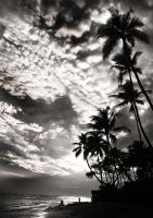 Hawaii sunset  Black and White by homesickellian