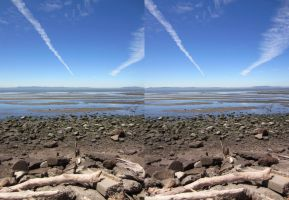 Stereograph - Heron Bay by alanbecker