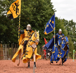 France Blue and Yellow Knight 4 by chavi-dragon