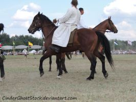Hungarian Festival Stock 117 by CinderGhostStock