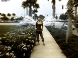 a angel in the usa by tAoE