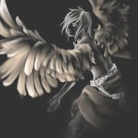 wings - speedpaint by ViTong4