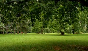 Auer-Welsbach Park by twisteDtenDerness