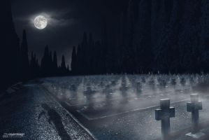 A Walk Through The Graveyard.. by PixelDazed