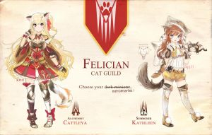 CLOSED Felician Cat Mercenaries for hire! by kpj11adopts