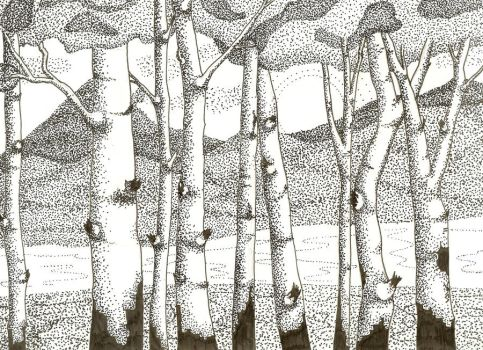 White Birch in Dots by valiik