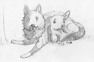 Fawn And Wolf: Sketch by Jiel
