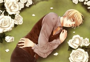 APH : Shattering Heart by opor-more
