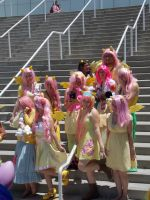 AX2014 - MLP Gathering: 32 by ARp-Photography
