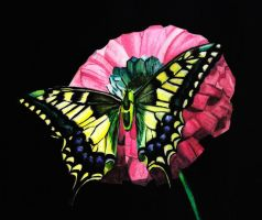 watercolour butterfly by Lish0ffs