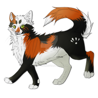 PhantomKisses the warrior cat by Wolfvids