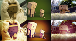 3 Danbo PSD pack by kmi2013