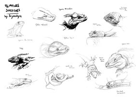 Reptiles live sketches by Ssynahya