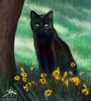 Speed Painting - Black Cat by d3fect