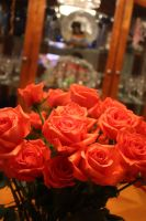 Roses VII by KW-stock