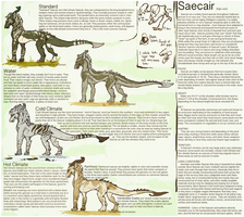 Saecair Ref V.2 by Stitchy-Face