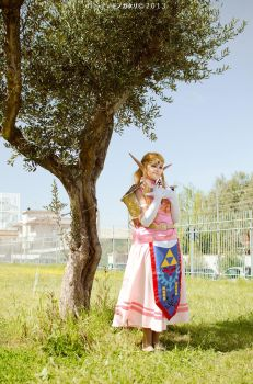 Princess Zelda : Waiting for you by FlamesOfOblivion