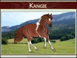 6897 AS Kangie - SOLD by Argentievetri