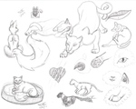 Lots of kitty sketches by Lady-Autobot17