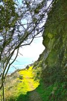 Cliffside Path by Euthynteria