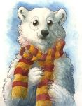 I has a scarf by maggock