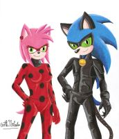 Miraculous LadyRose and Cat Sonic by GothNebula