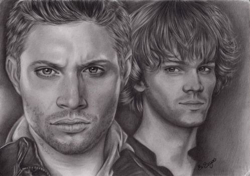 Carry On My Wayward Son by landofsunshine