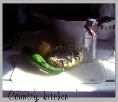 Country kitchen by faerykisses
