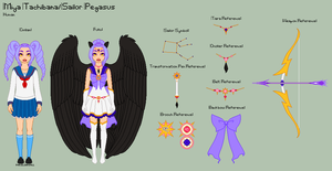 SM - Miya Reference Sheet by porcelian-doll