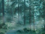 Forest 46 by Amalus