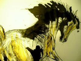 wild yellow horse by Aurora-Chemical