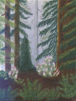 Redwoods and Rhododendrons by Kessira26
