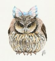 Owl scowl by Aphilien