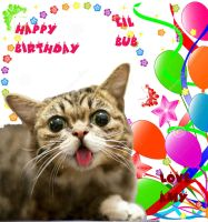 Happy-Birthday-Lil-Bub by SoulEaterQueen