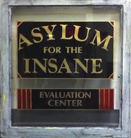 Asylum for the Insane by efawjedi