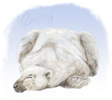Pompey the Polar Bear by malika-mango