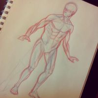 Daily Anatomy 001 by AndrewKwan