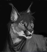Caracal Greyscale by RogueLiger