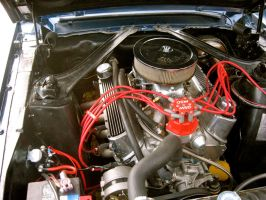 Small Block Ford by absoluteandrew