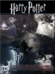 HARRY POTTER BOOKCOVER by VaLeNtInE-DeViAnT