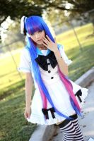 PswG Stocking Cosplay Sailor Version by Lycorisa
