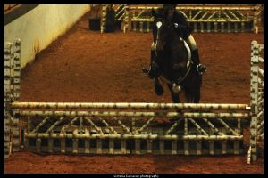 Winter I show 4 by blondy0262