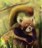 Unfinished Things #1: Red panda by waltervan00