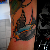 Swallow Tattoo by DevilJack28