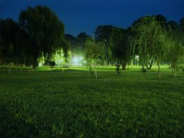 national garden in night by danamis