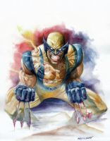 Wolverine Watercolor by Reybronx