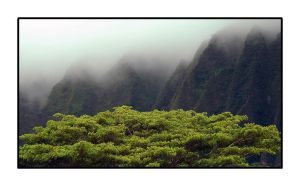 Misty Pali Mountains by njh79