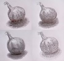 Small Onion Sketch by Marinauta