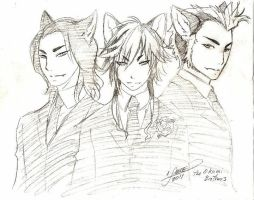 Ookami Brothers by aichan25